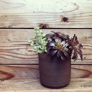 PUTIKMADE Pottery - Photo 2 of 4 - Not just for succulents. The Bamboo series of planters have a drainage hole, so feel free to fill them with thirstier flora.