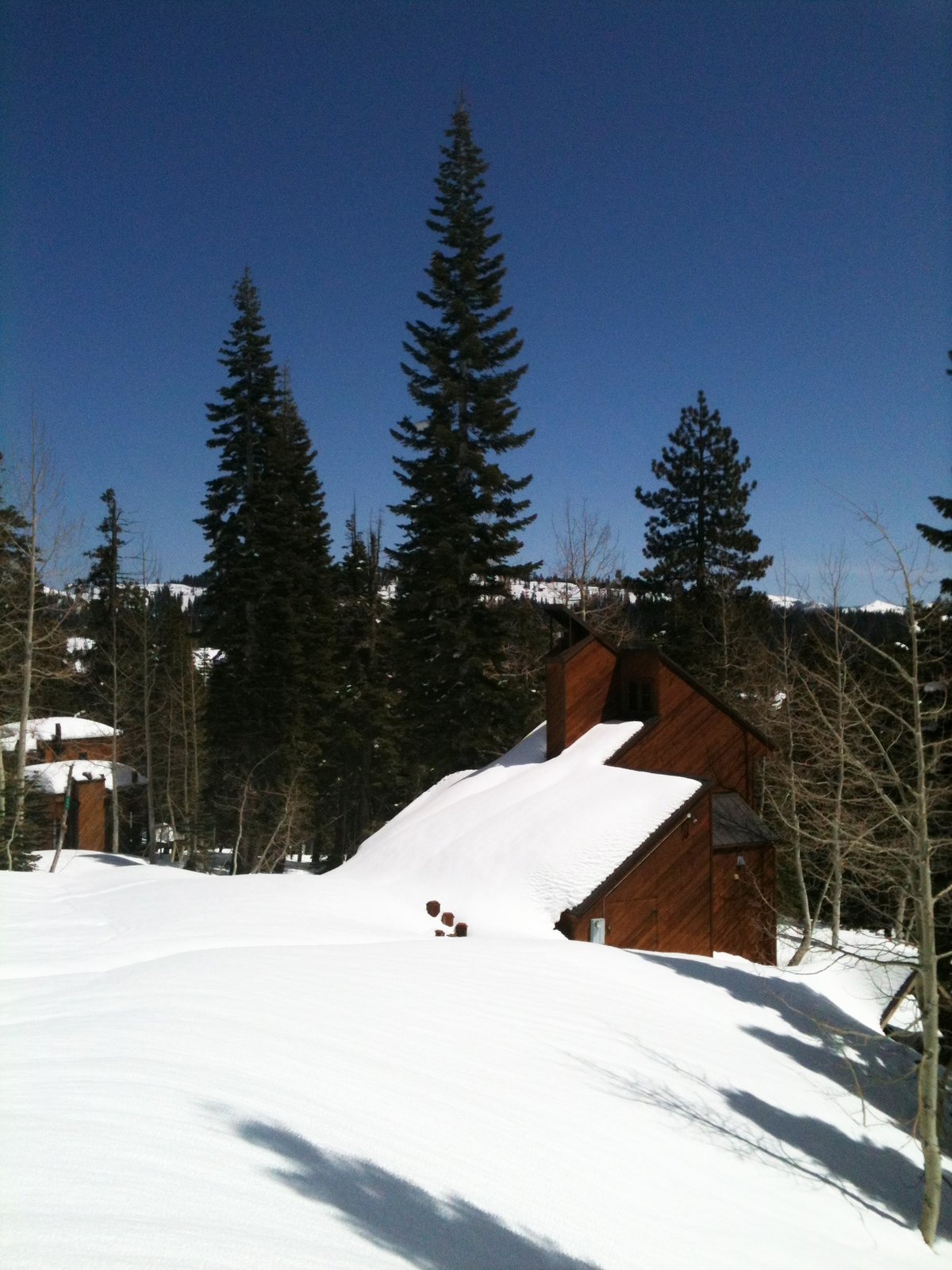 The diagonal redwood slats and geometric structure are wonderfully accentuated by the snow bank covering the backside of the cabin.  Photo 4 of 4 in Snow in Bear Valley