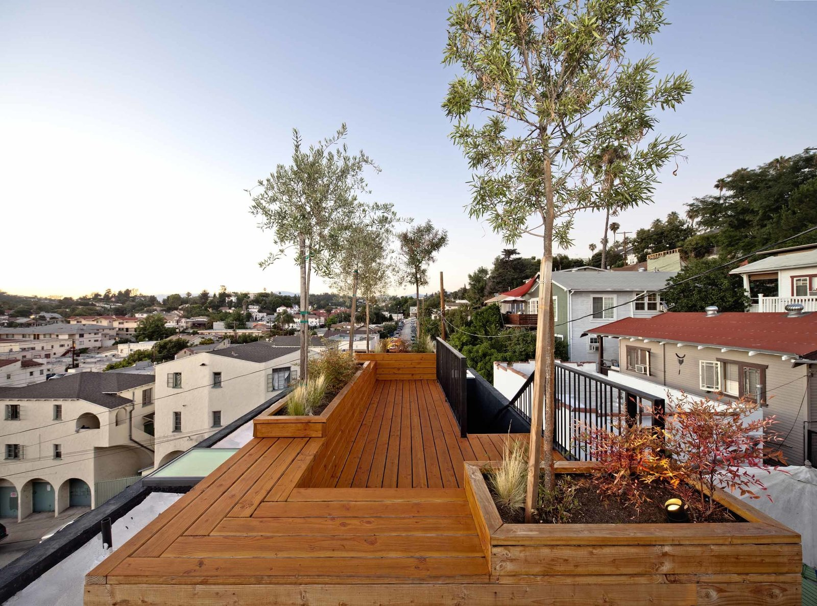 "Planted with three olive trees and drought-resistant shrubs, the roof terrace provides an entertaining space, where Storey often has friends over for drinks and dinner. Storey made the deck out of clear-coated Douglas fir to save costs; it also echoes the cabinets inside, providing visual continuity. ""[I wanted] to keep the variety of wood species you use to a minimum,"" says Storey.  Photo 9 of 9 in Home and Studio Maximizes Very Narrow Site in Echo Park"