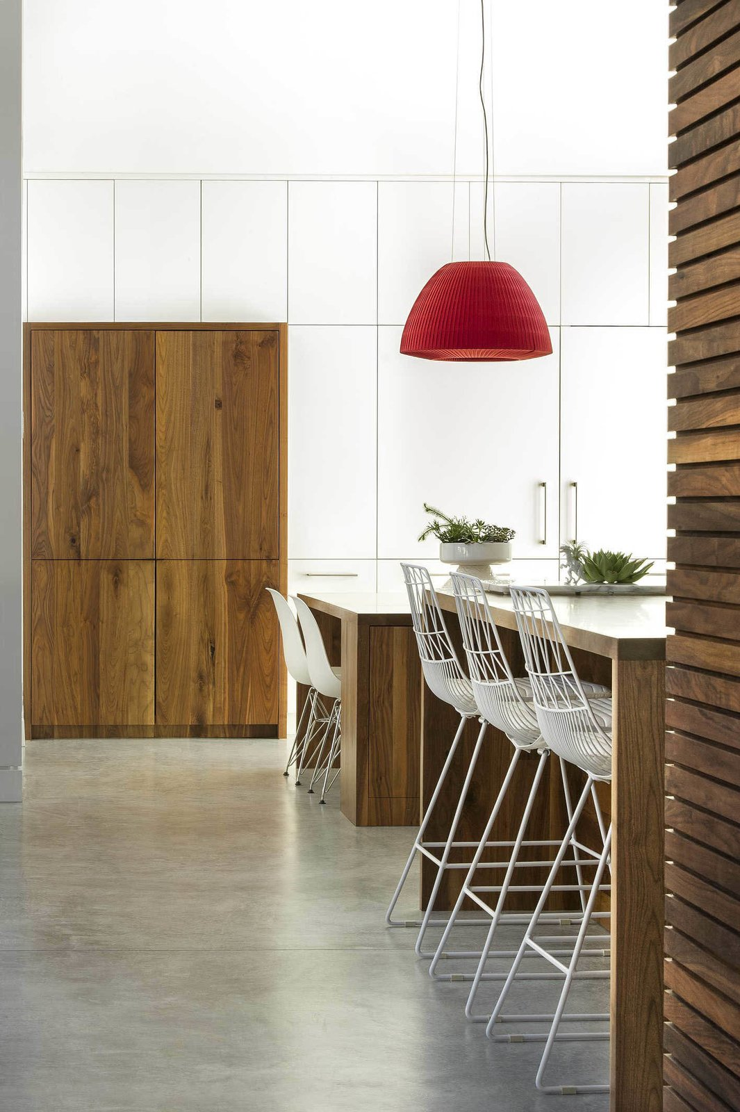 The floors in the kitchen are polished concrete. A Modern Home for a Design-Savvy Family in Florida - Photo 5 of 7