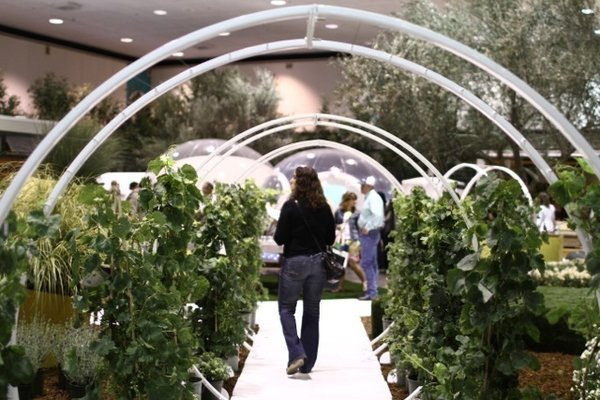 Shades of Green Landscape Architecture designed this striking walkway using climbing vines and metal arches by Terra Trellis.