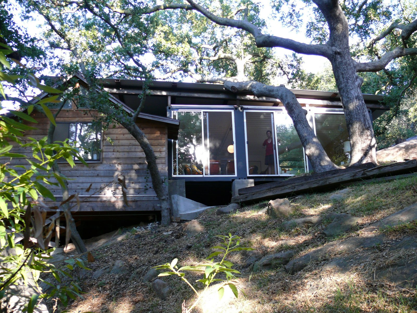 On the opposite side of the house stands an old oak grove; the views to it are enhanced by floor-to-ceiling sliding doors, which, when opened, create a natural breezeway through the house. Jantzen was able to sneak the roofline in just under an existing branch. At left is the small bedroom of the original cabin.  Five Inspirational Shipping Container Homes by Diana Budds
