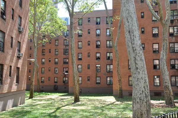 Vladeck Houses, Manhattan. Courtesy of Interboro Partners.