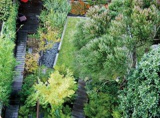 Backyard Marsh in San Francisco - Photo 5 of 5 -