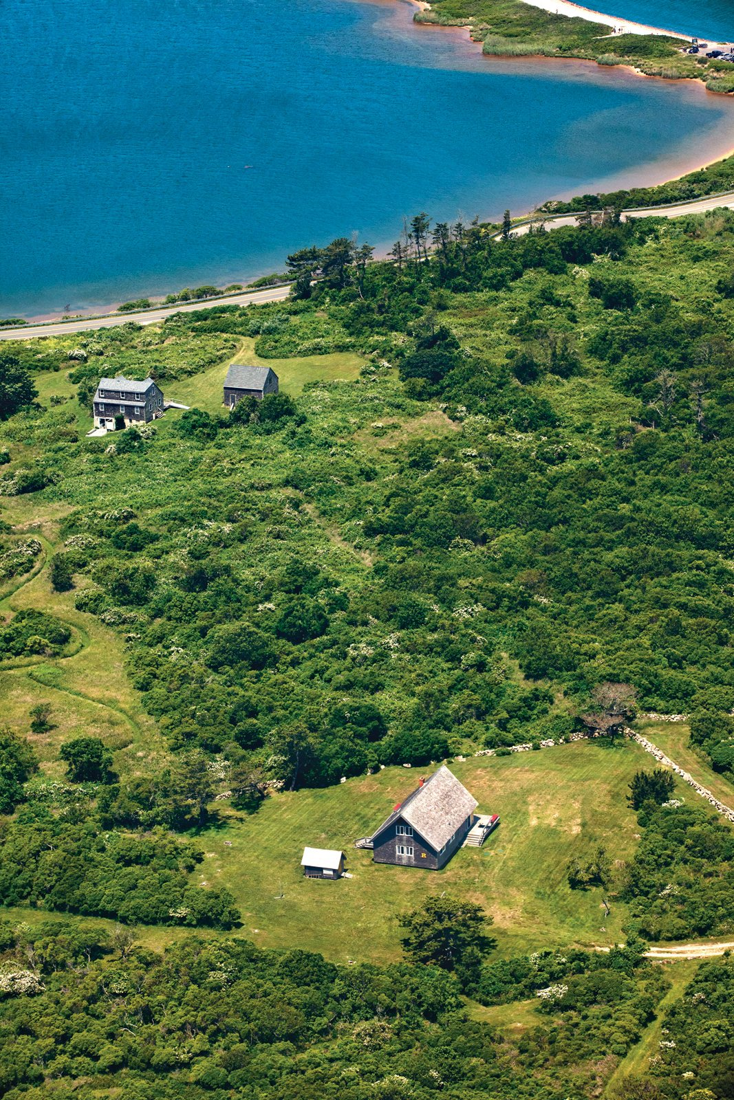 The Risom plot, located on the northern portion of the island, is bordered by a low stone wall, an aesthetic element that appears throughout Block Island. Tagged: Outdoor, Shrubs, Trees, Grass, and Woodland.  Best Photos from Jens Risom's Block Island Family Retreat