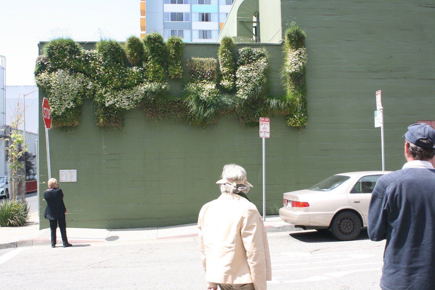 """Clementina Cares"" living wall by Jessica Neafsey."