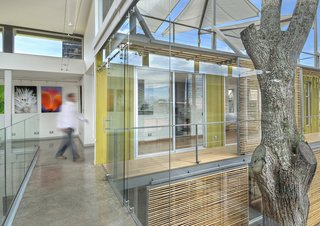 Who Knew a Relaxing Tropical Retreat Could Be Made of Shipping Containers? - Photo 4 of 10 - The stacked containers and inner courtyard, which wrap around a cedar tree, allow for plenty of natural sunlight, which helps illuminate the client's work on display in the main gallery space.