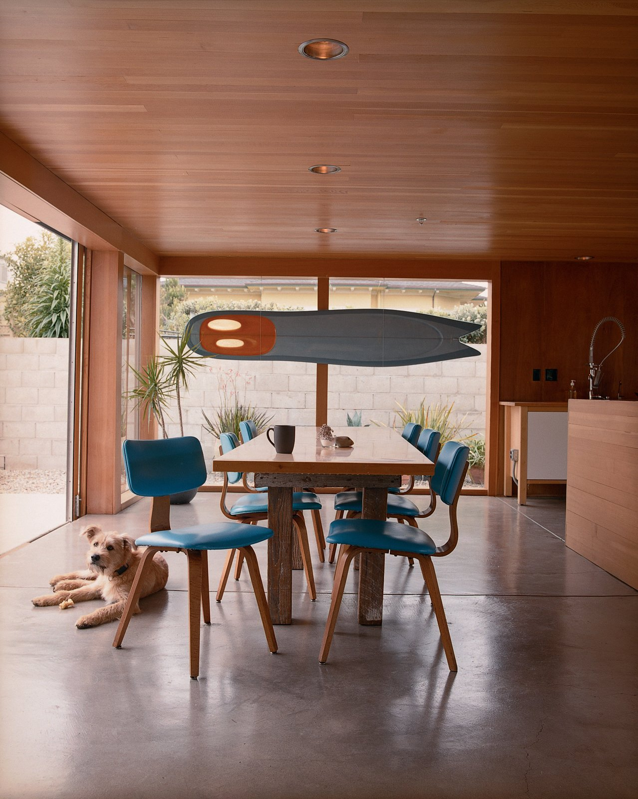 """To inexpensively re-create a classic modern look for a wood-paneled ceiling,   the couple used Douglas fir tongue-and-groove flooring. They also used flooring to cover the expansive kitchen island. """"It was really funny to see the flooring guys up on the island banging away,"""" reports Thomas. The ceiling presented a greater challenge in that regard. www.woodfloorsonline.com  To cut down on costs, the architect specified standard Marvin (new construction) windows throughout. Utilizing the maximum parameters of Marvin's predetermined sizes, Thomas and Mary Kate were able to achieve the modern open look they desired, but for a fraction of the cost. They also replaced all of the windows' vinyl interior frames with wood that complements the home's pared-down aesthetic. www.marvin.com  Dogs Who Love Modern Design by Brian Karo from A Look At Dining Rooms"""