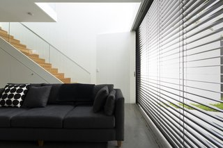 Renovation Near Sydney Opens Home Onto a Lush Garden - Photo 6 of 8 - When the sun is at its brightest, the east-facing glass wall is shielded by retractable Horiso venetian blinds that have been powdercoated to match the extension's charcoal cladding.