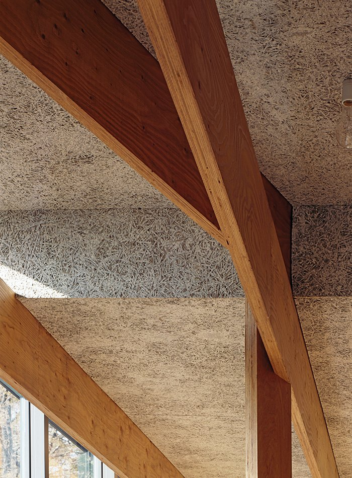 Wood-fiber cement panels by Koa Funen line the interior, and the criss-crossing laminated veneer lumber beams are from Key-Tec. Japanese Home Among the Trees Uses Bookshelves and Glass for Walls - Photo 5 of 8