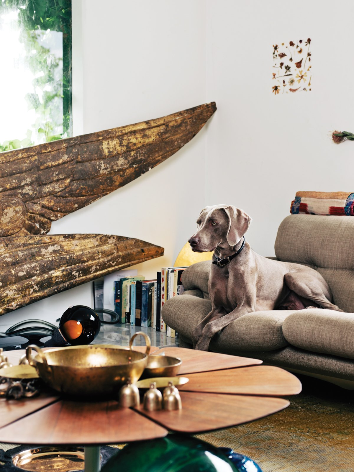 Photo 13 Of 45 In 45 Pets In Beautiful Modern Homes From Designers And Dogs A Modern Love Story