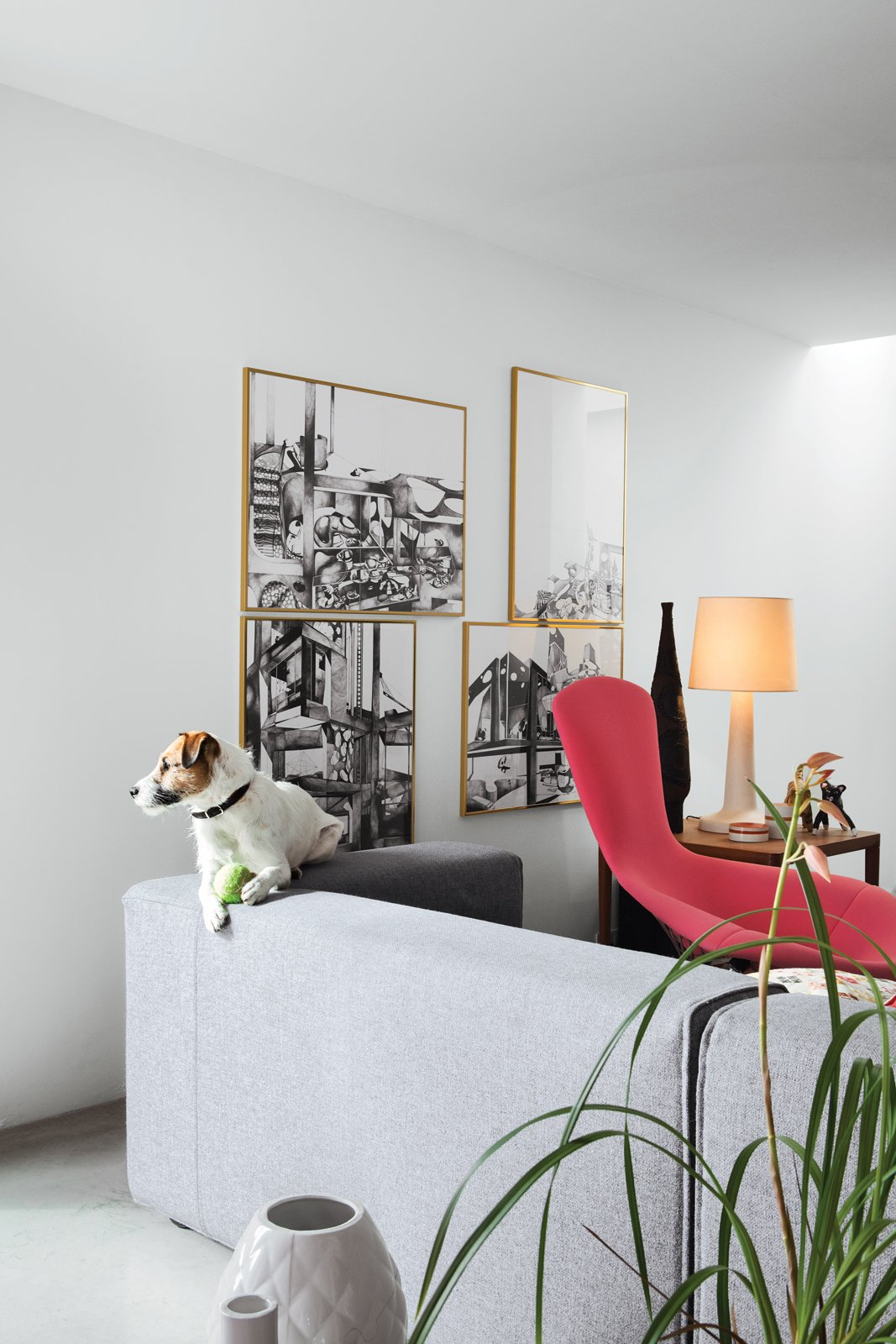 Ibbel, a Parson Russell terrier, and his tennis ball survey the living room from the back of a Cuba sofa by Rodolfo Dordoni for Cappellini. The framed drawings are by Poorter and Holdrinet.  Photo 18 of 25 in 25 Dogs Living in the Modern World from This Factory Switches Out Cattle-Fodder for Furniture