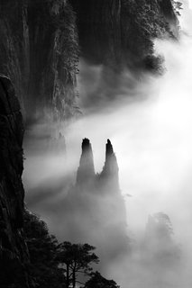 Celestial Seasons - Photo 8 of 9 -