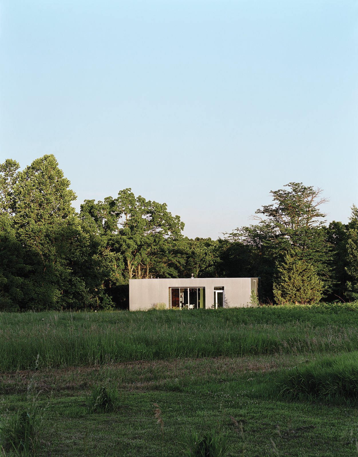 New Grass Roots by Dwell