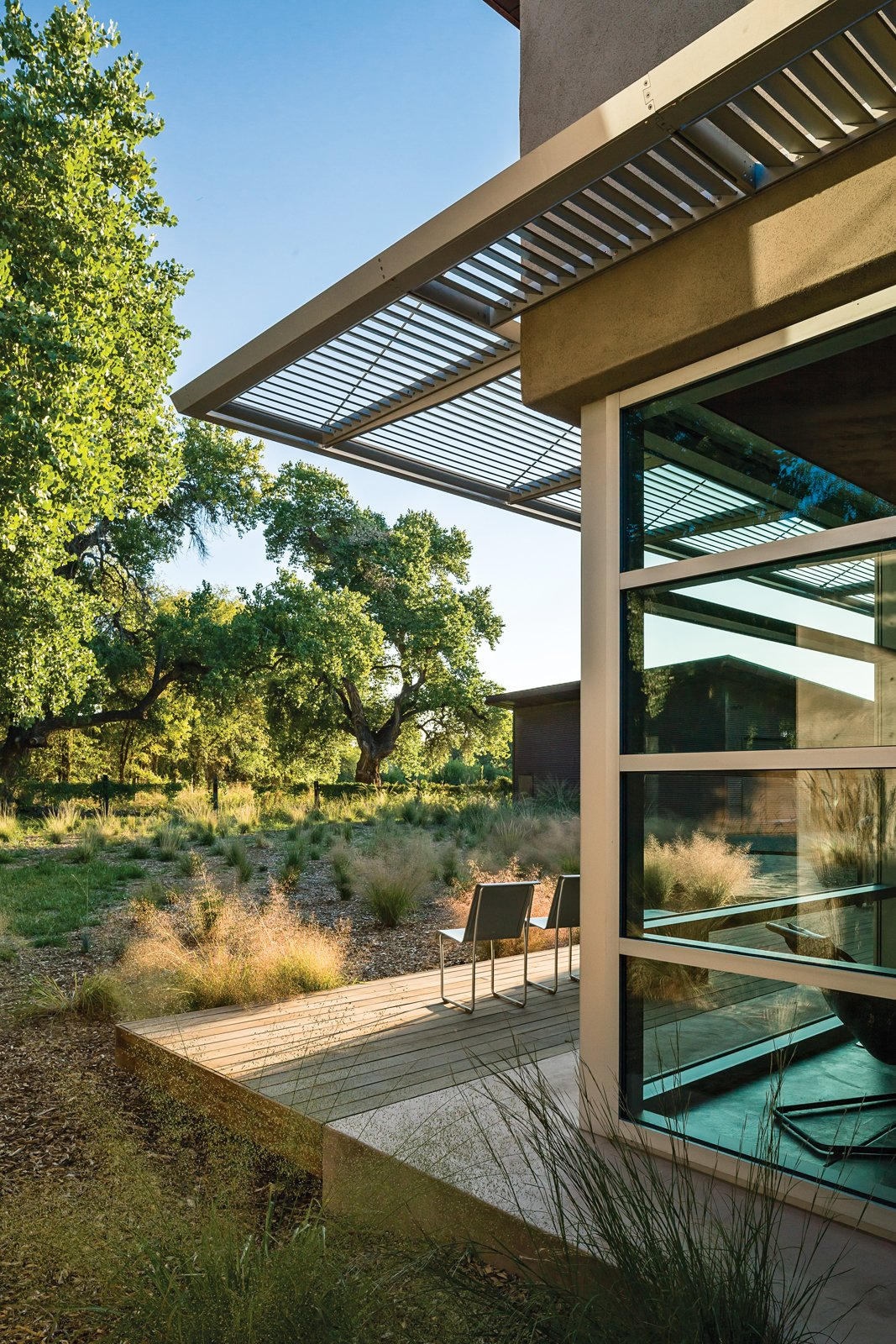 """One major directive was to """"honor the tree,"""" referring to a particular 85-year-old cottonwood on the property. Photo by: Kirk Gittings Tagged: Outdoor, Wood Patio, Porch, Deck, and Small Patio, Porch, Deck.  Photo 1 of 5 in A Sustainable Rammed Earth Home in New Mexico"""