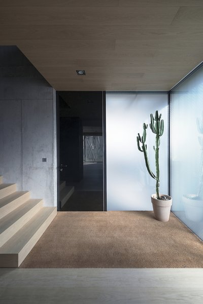 Wood, carpet, glass, and concrete: the entryway is a nexus of material and textures.