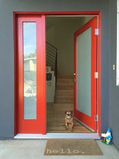 Photo of the Week: A Door and a Dog to Welcome You Home - Photo 1 of 1 -