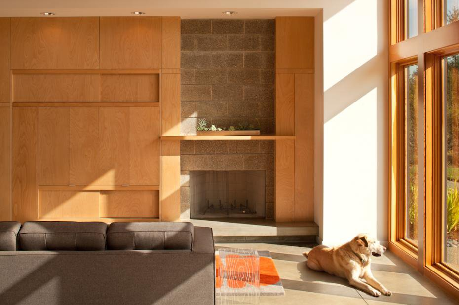 Sunlight bathes the interior of the house (and one of the couple's Labradors). Modern in the Country - Photo 8 of 11