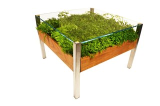 Product Spotlight: Living Tables - Photo 2 of 4 -