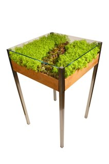 Product Spotlight: Living Tables - Photo 1 of 4 -