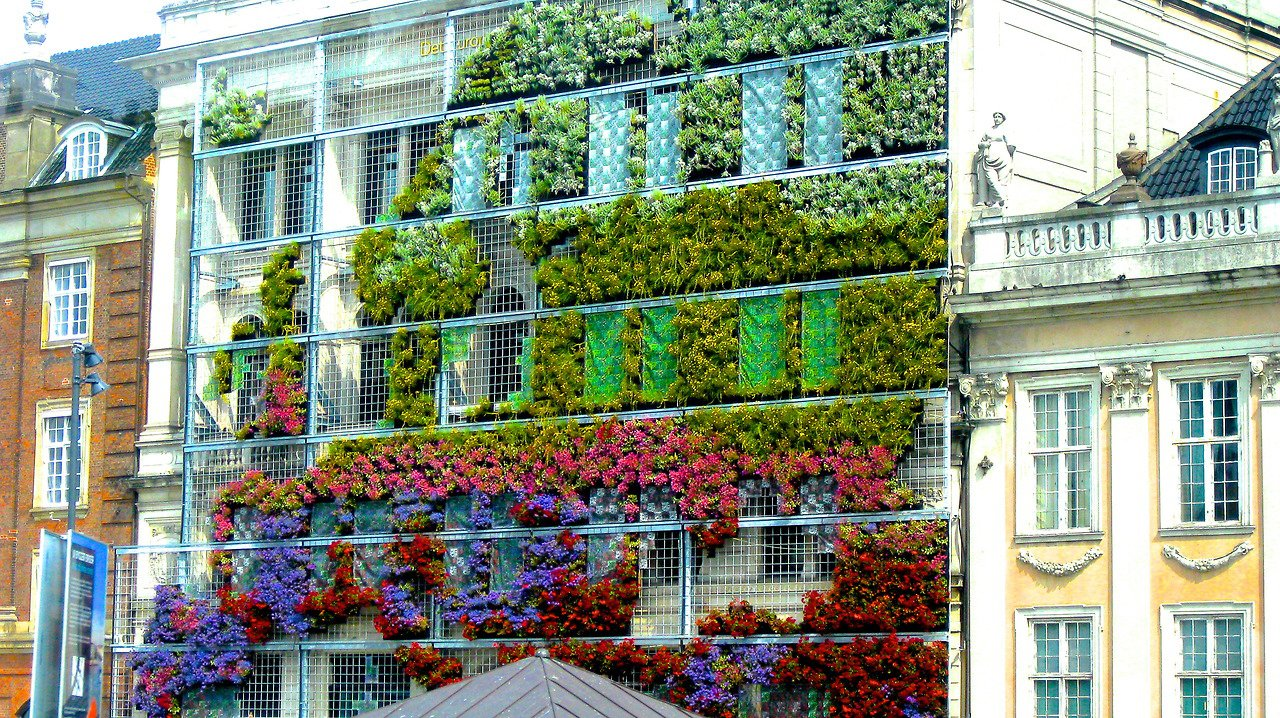 Photo 8 of 10 in living green walls 101 their benefits for Green wall advantages