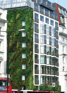 Living Green Walls 101: Their Benefits and How They're Made - Photo 9 of 9 -