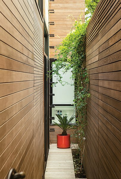 "Inspired by her visits to Japan, architect Cary Bernstein did not build to the property lines but left open about three-and-a-half feet on each side of the house: ""These little side gardens make rooms feel bigger, since they make nature part of your interiors and bring light and air circulation into the house,"" she says."