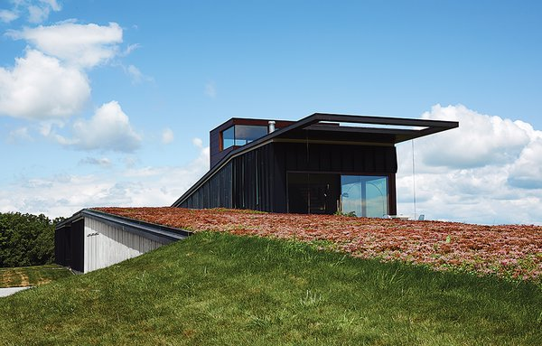"The house that architects Brian Johnsen and Sebastian Schmaling designed for Chele Isaac and John Neis appears to pop up from Wisconsin's ""driftless area,"" an effect that is enhanced by a sedum roof that changes color with the seasons."