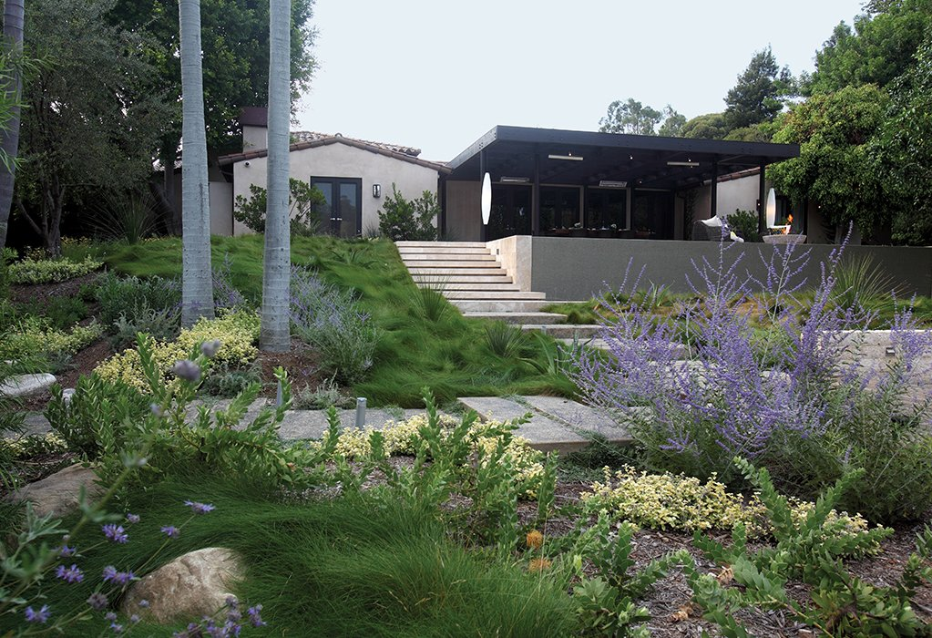 FormLA Landscaping principal Cassy Aoyagi integrates drought-resistant plants into her Southern California projects.  Photo 1 of 3 in Native Plants Can Transform Your Yard—And The Planet