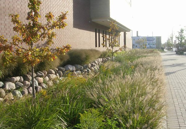 The Pilsen Sustainable Streetscape program revitalized sections of Cermak Road and Blue Island Avenue in Chicago, Illinois. Bioswales—landscape elements that provide environmentally firendly alternatives to storm sewers—line portions of the industial thoroughfares.