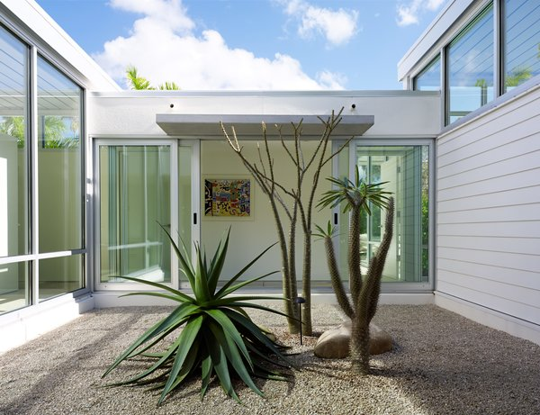 Sliding doors from PGT Industries open onto a courtyard planted with a giant aloe and two Madagascar palms. A Nordyne HVAC system embedded in the plinth helps the house keep a low profile. The siding is by James Hardie Building Products.