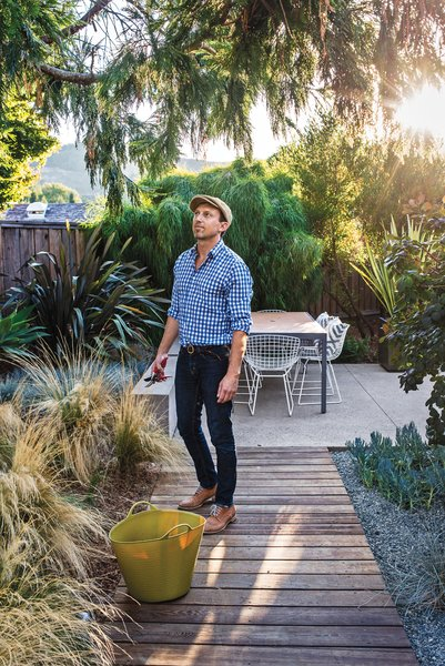"""Modern Furniture Fit for a Classic Eichler - Photo 11 of 15 - """"I love the look of mass plantings,"""" notes Neely, near Mexican feather grasses--which thrive on the sunny lot."""