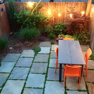 Photo of the Week: Cozy Brooklyn Backyard