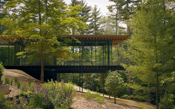 Kengo Kuma updated the mid-century Glass Wood House in New Canaan, Connecticut, while maintaining the home's integration with its natural surroundings. Photo by Kengo Kuma & Associates for Glass Wood House