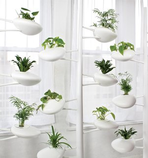 Danielle Trofe DesignThe Live Screen is an indoor planter system that uses self-sustaining, hydroponic technology.