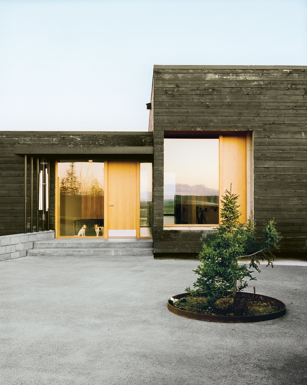 Parson Russell terriers Pepper and Trixie get a glimpse of the large courtyard through a glassy expanse by Marvin Windows and Doors. Tagged: Exterior, House, and Wood Siding Material.  Photo 12 of 20 in This Modern Cabin Is the Ideal HQ For a Family in Alaska