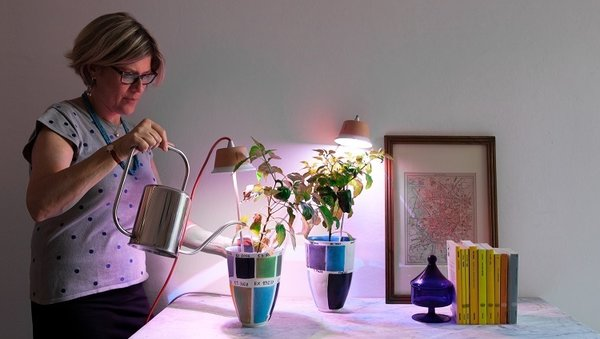 Bulbo Quadra and Cynara  Part of the movement to utilize LED lights to popularize and expand indoor farming, Bulbo adds a touch of Italian panache to your indoor soil-and-seed endeavors. The unobtrusive design and light footprint—the Cynara, pictured above, looks like a small, overturned pot—make them easy to use in a variety of situations.   Photo by Ottavio Montanari