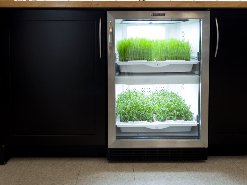 Urban Cultivator   A dishwasher-sized micro-garden that appears to be a wine rack for plants, the Urban Cultivator looks poised to slide into pre-existing kitchen designs, an easy way to add a drawer of fresh herbs to your home.