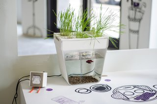 PSFK Imagines Home of the Future - Photo 4 of 5 -