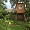 @sticks.and.bricks: it's #treehouse season! please excuse me while I go #playintheyard.
