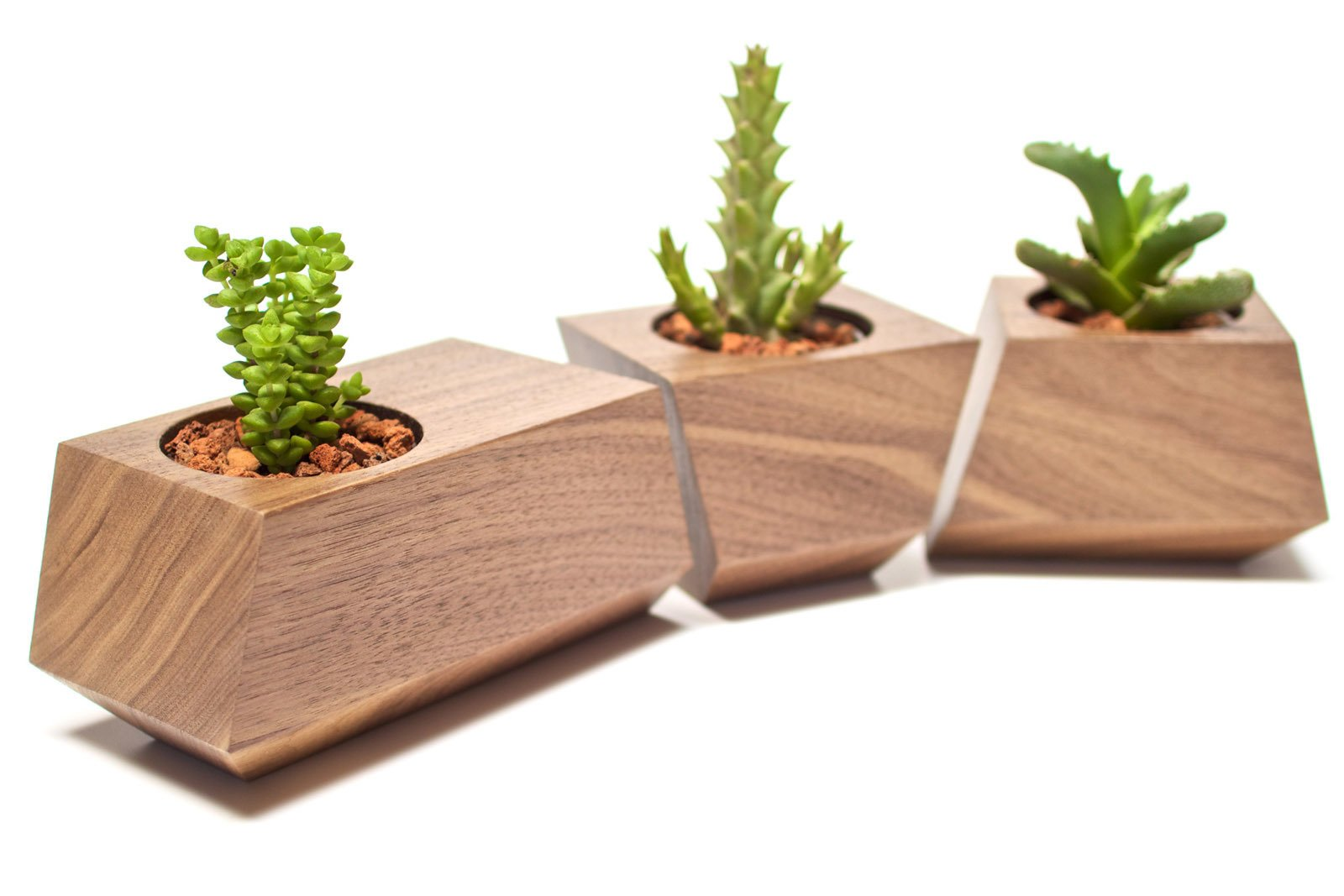 Here's the walnut planter set with a natural finish.  20+ Ways to Design with Planters by Allie Weiss from Walnut Planters by Revolution Design House