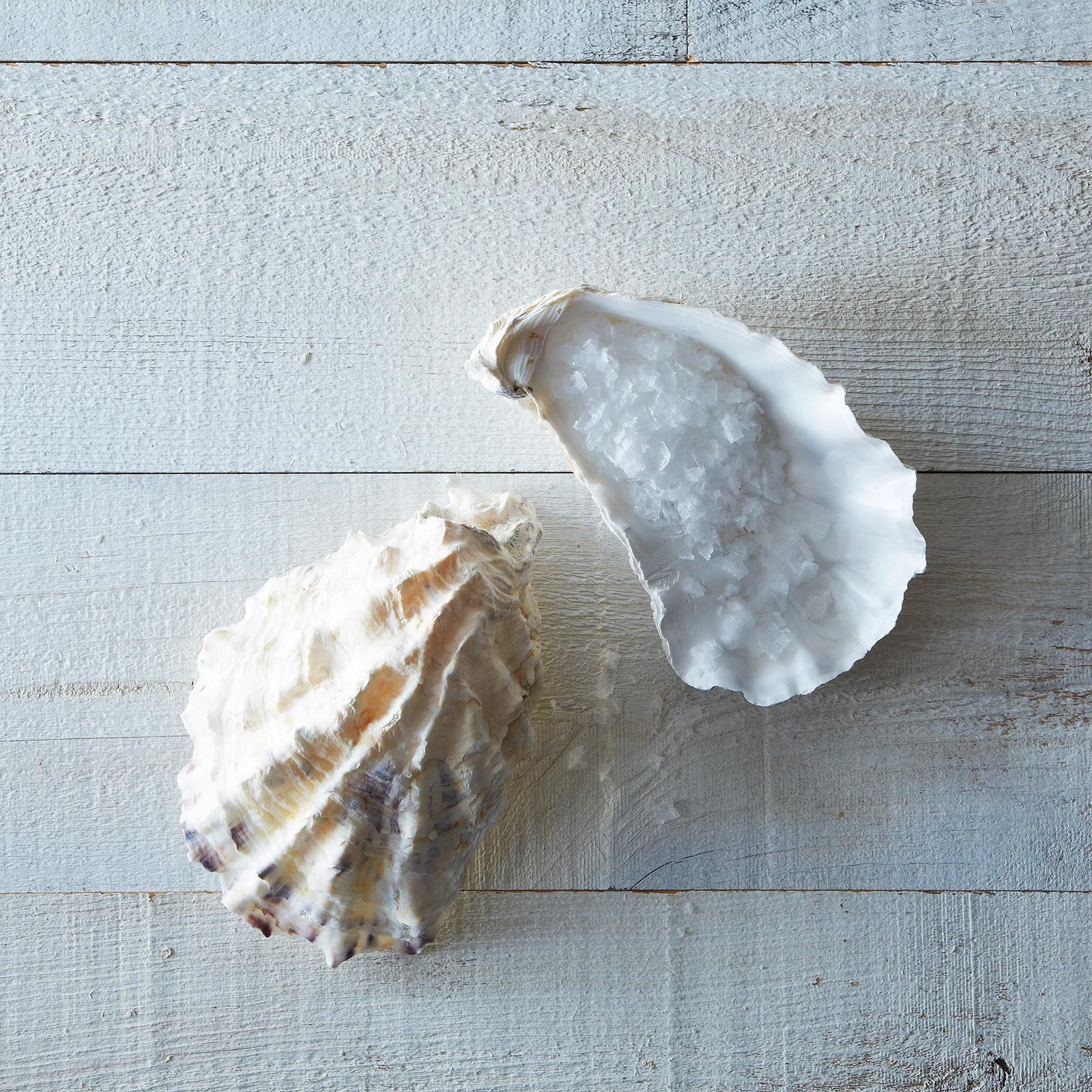 """""""Ben Jacobsen of Jacobsen's Salt Co. in Oregon, collects these oyster shells in the bay where he draws the sea water for his flakey sea salt. We use the shells for holding salt, coarsely ground pepper, and sliced citrus; we also think they make a fine soap dish."""" Jacobsen's Oyster salt cellar pair at Provisions, $16  Photo 9 of 10 in Cooking Expert-Approved Kitchenware from Provisions"""