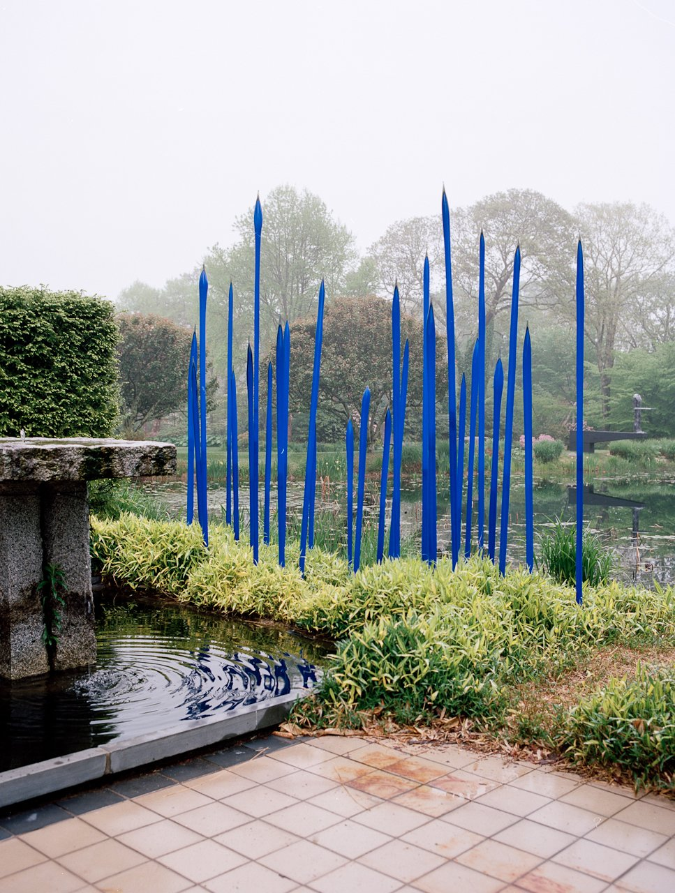 "Cobalt glass spears by Seattle artist Dale Chihuly reside in the pond beside the main house. Larsen is both friend and patron to Chihuly, and the two were introduced when the latter was studying interior architecture and weaving. Larsen recalls in his memoir, ""When we met, [Chihuly] was heating strips of glass sufficiently to bend them over and under to form an interlaced plane. I suggested he learn glassblowing with Harvey Littleton, the father of modern glass, who had been a prolific potter when I was at Cranbrook."" Chihuly then went to Madison, Wisconsin, to study under Littleton, and he then started a school in the Northwest with $2,000 in prize money—now Pilchuck Glass School.  Photo 11 of 12 in Q&A with Textile Designer Jack Lenor Larsen"