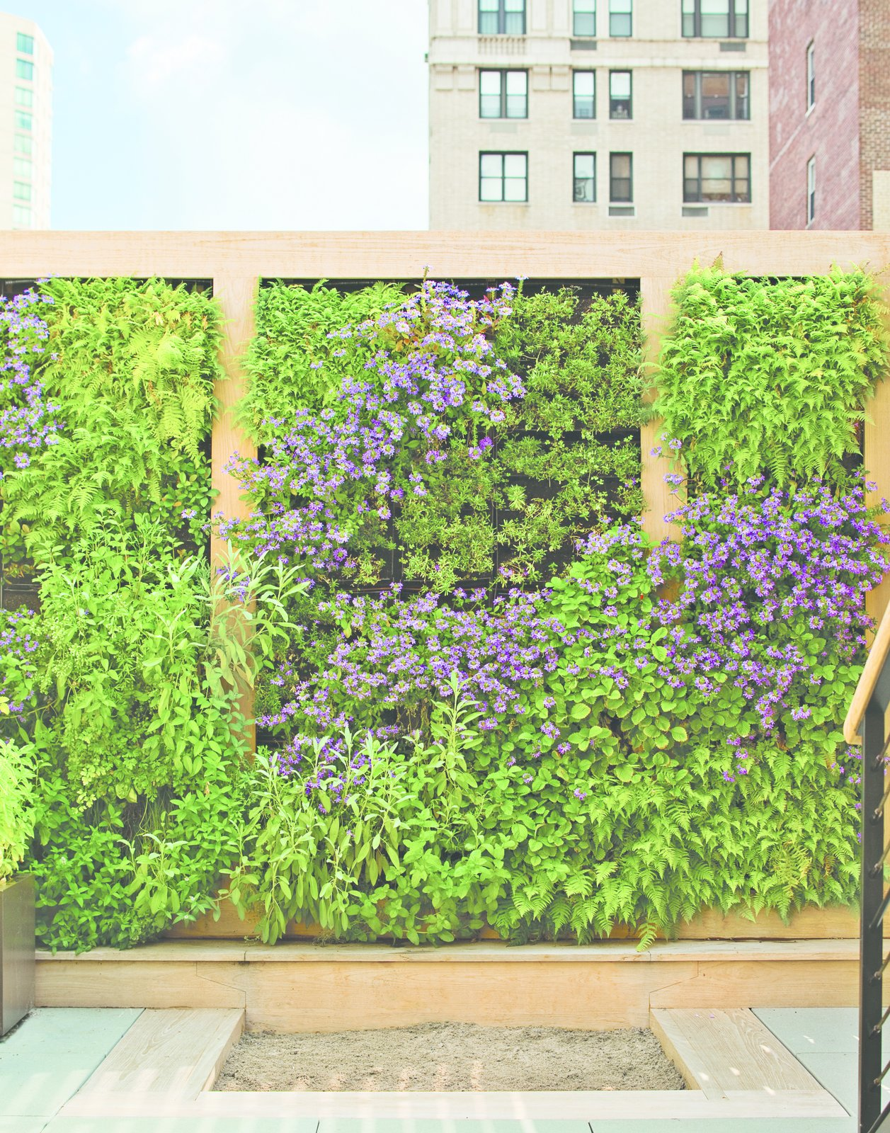 The perennial plants on the green wall were plotted out as a piece of verdant abstract art. Edibles, like strawberry, thyme, and rosemary, are planted within children's reach.