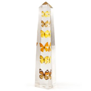 Creativity and Constraint: A City Modern Preview - Photo 6 of 9 - The Lucite Butterfly Obelisk is a unique home accent allowing a view of various butterflies from all angles.