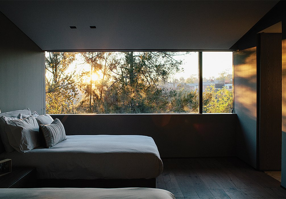 A window in another bedroom overlooks protected woodland. Tagged: Bedroom and Bed.  Photo 13 of 15 in A Lush Retreat With a Sheltered Rooftop Pool in Mexico City