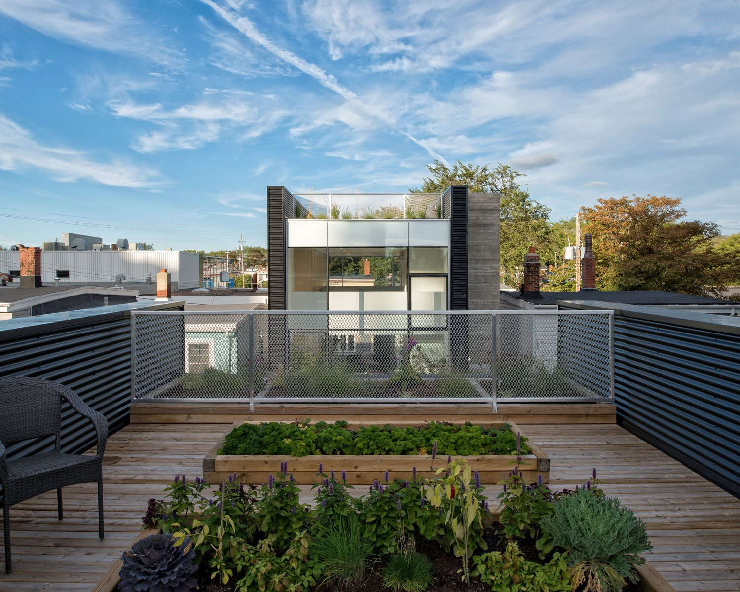 """On the lower roof, cedar decking and flower beds define one of several outdoor gardening spaces. Part of her ongoing research into the livability of cities, Fitzgerald aimed to create landscaped areas that were """"aesthetic, aromatic, educational, and productive."""" The deck is bordered by an expanded aluminum mesh railing and black metal corrugated panels. Tagged: Outdoor, Rooftop, Raised Planters, Vegetables, Flowers, Small Patio, Porch, Deck, Vertical Fences, Wall, Wood Patio, Porch, Deck, and Metal Fences, Wall.  Photo 3 of 9 in The Architect Next Door"""