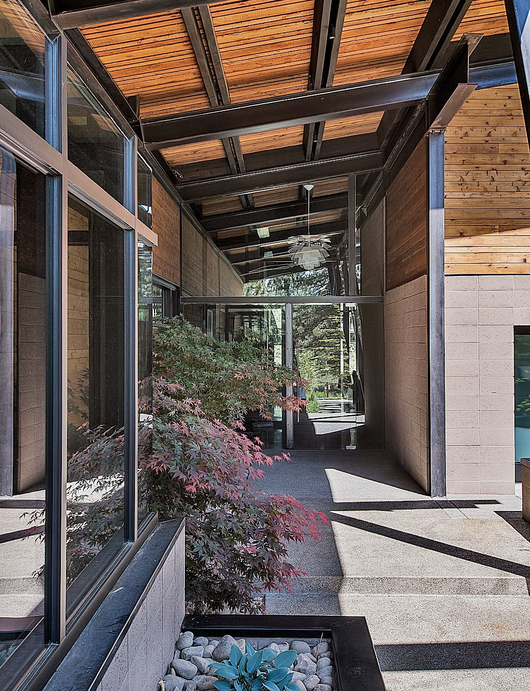 The entrance introduces the home's main materials: steel, glass, wood, and concrete. Tagged: Outdoor, Walkways, Concrete Patio, Porch, Deck, Hardscapes, and Front Yard.  Photo 4 of 19 in A Forest Sanctuary Designed to Support Autistic Triplets, Their Parents, and a Host of Caregivers