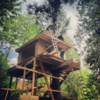 """@nelsontreehouse: """"We spy a treehouse with some Japanese flair. Could it be a teahouse?"""""""