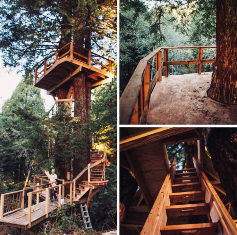 """@treehousesapp: """"If at first you don't have the perfect view, build a treehouse higher and higher"""""""